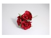 Click here for larger picture - Tea Roses X3 Burgundy  £1.79