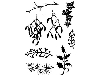 Click here for larger picture - Cling Stamp Set - Christmas Greenery (CDCCSTCHR-05) £8.99